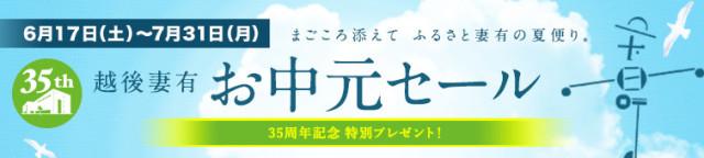 under_visual_ochugen_2017